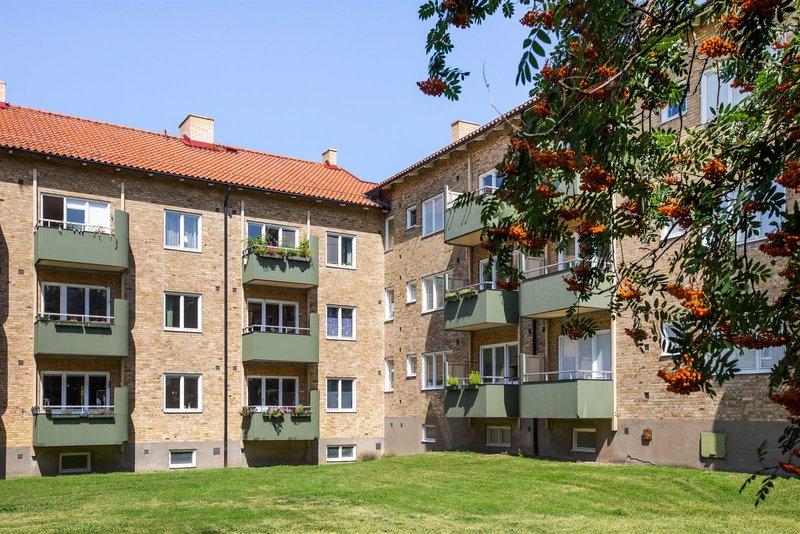 Ellen Johnsson, Gamlemark 711, Lund | hayeshitzemanfoundation.org