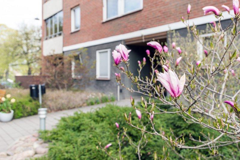 Dejta kvinnor i stergtlands ln Sk bland tusentals