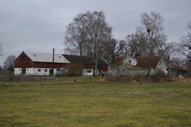 Lyn Andersson, Vannard 2017, Ssdala | satisfaction-survey.net